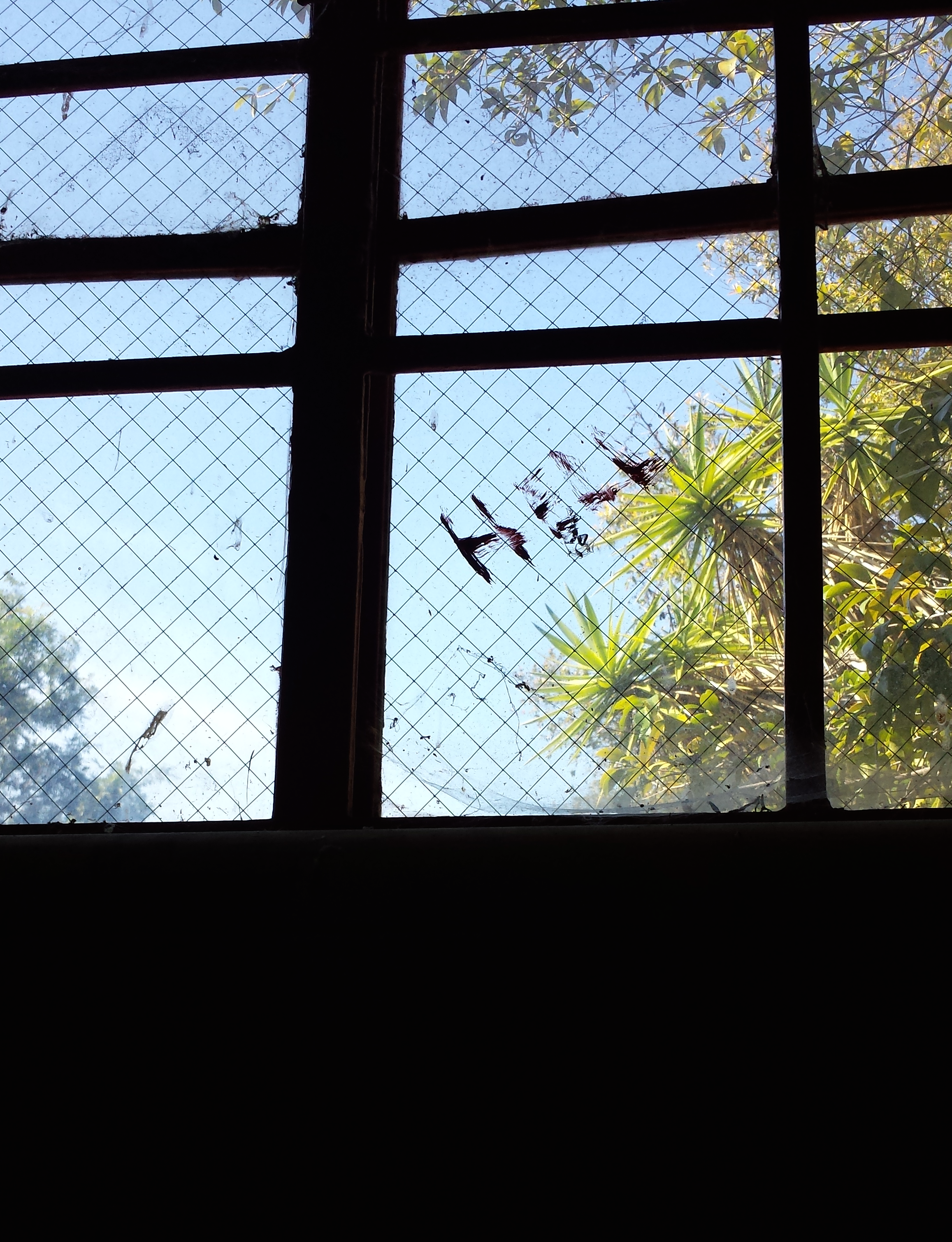 "Photograph of the word ""hell"" inscribed on a window at Camarillo State hospital."